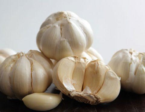 Bawang Putih Turunkan Kolesterol